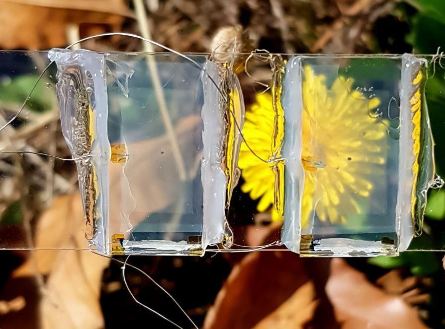 Incheon National University: реальная прозрачность новых фотоэлементов - Kapital.kz