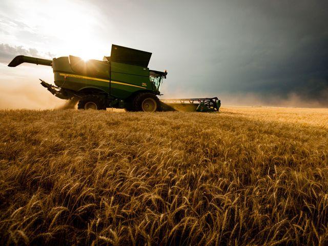 Лидером диверсификации сельского хозяйства стала Северо ...