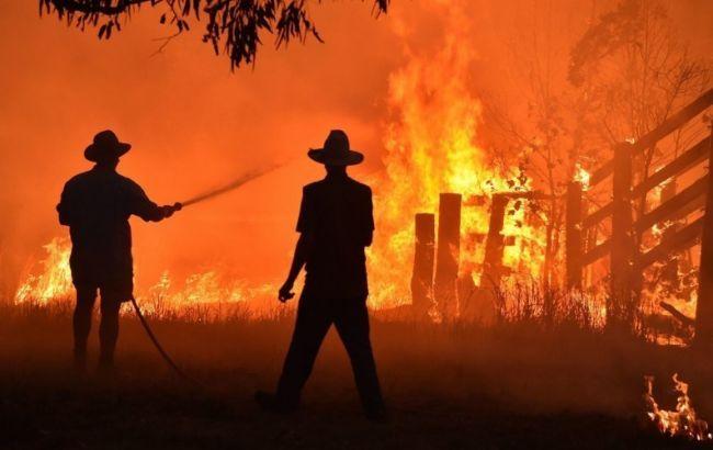 Правительство Австралии выделит $35 млн на восстановление природы- Kapital.kz