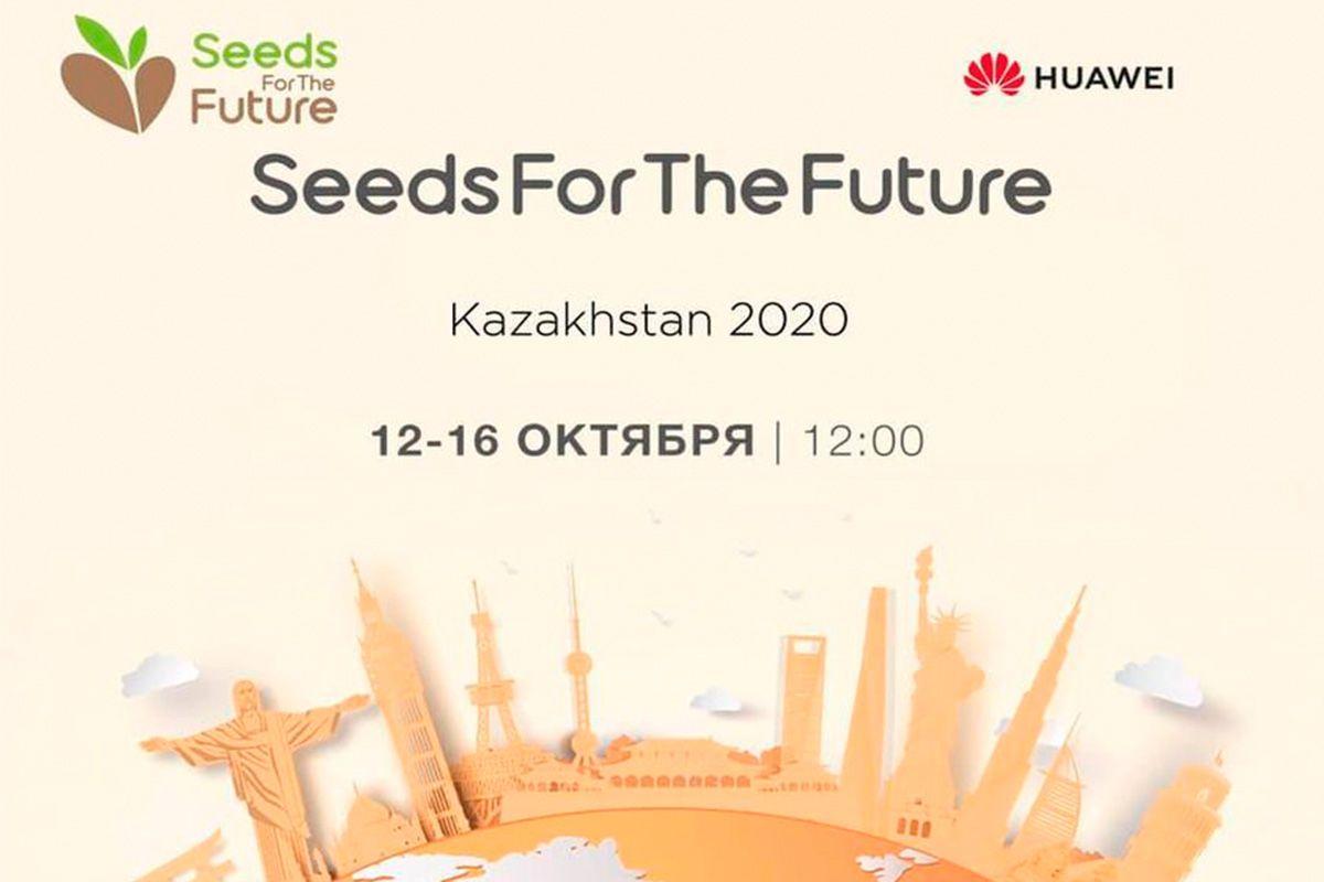 Seeds for the Future: Huawei взращивает таланты- Kapital.kz