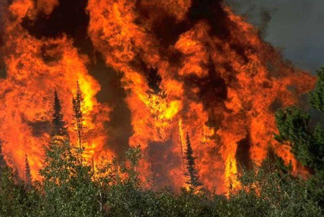Все население города в Канаде приказано эвакуировать - Kapital.kz