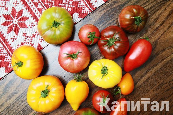 Галым Чуашев: Мы 100% своей продукции реализуем через интернет 407073 - Kapital.kz