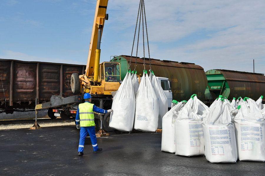 Что помогло экспорту пищевой промышленности во время пандемии - Kapital.kz