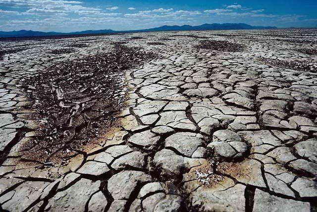 Всемирный банк предрек миграцию 143млн человек из-за климата- Kapital.kz