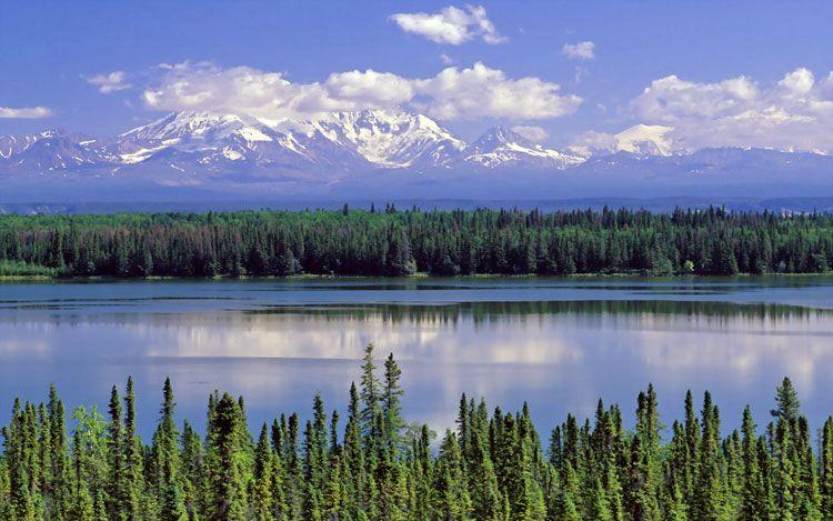 США скрыли петицию за присоединение Аляски к России- Kapital.kz