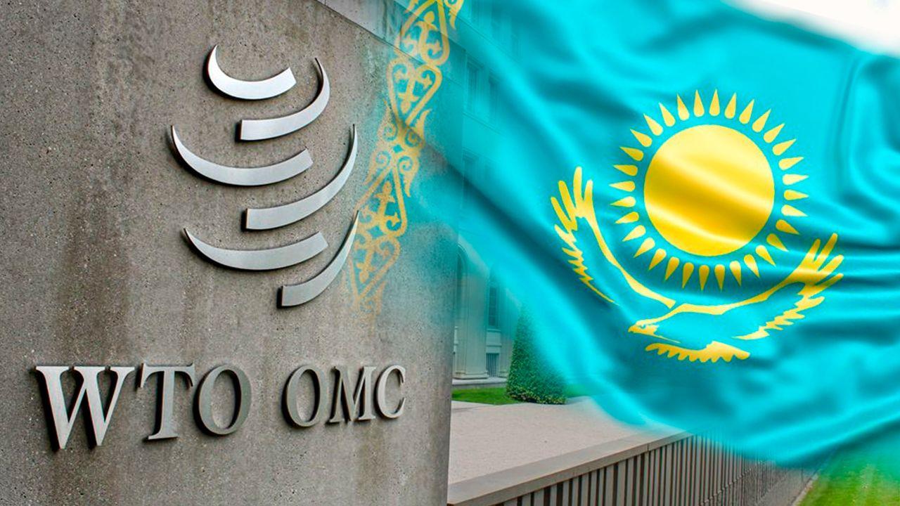 Как Казахстан переживает «переходный возраст» в ВТО- Kapital.kz