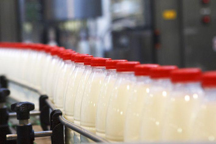 В Астане увеличено производство хлеба и молока- Kapital.kz