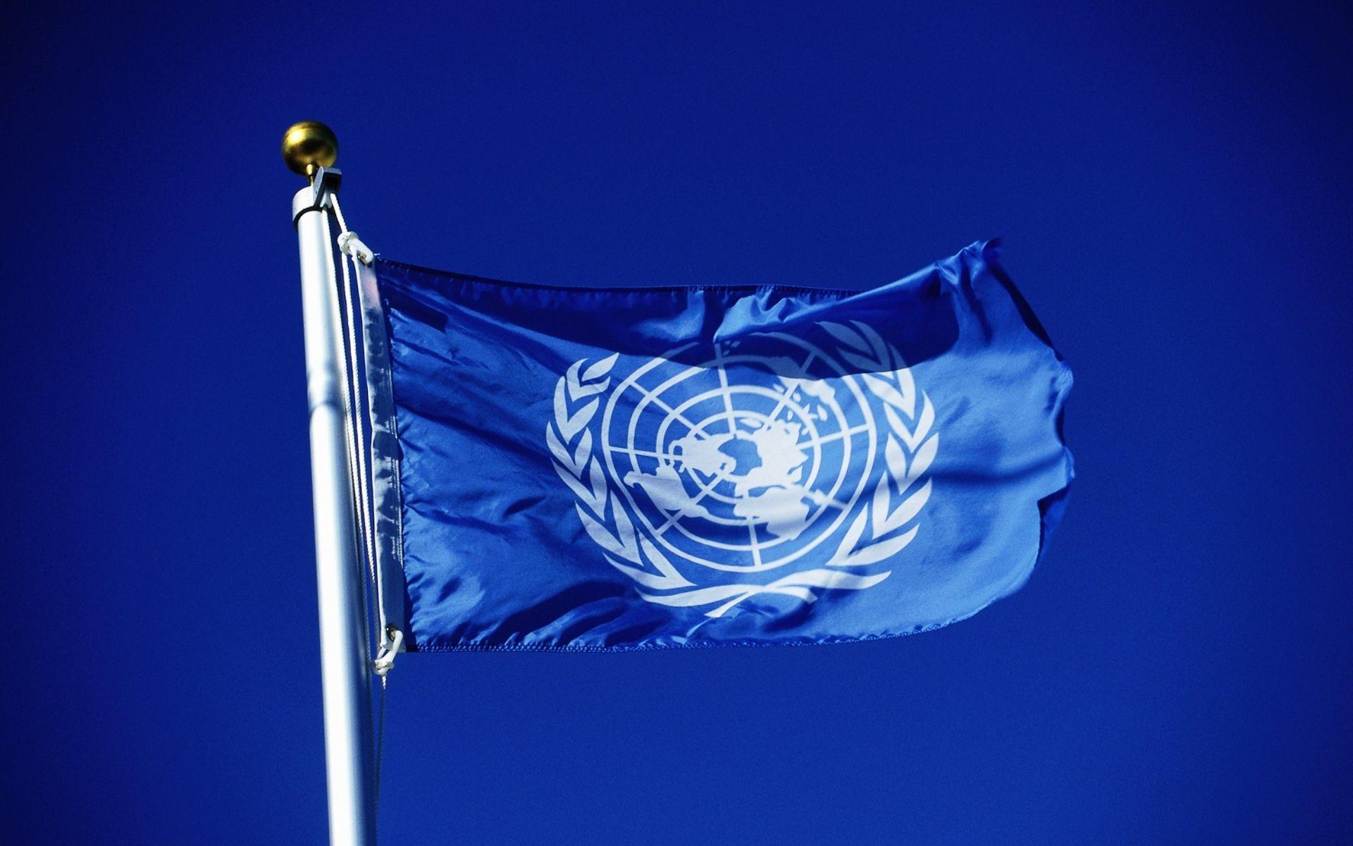 Эксперты ООН оценят реформу МВД в Казахстане- Kapital.kz