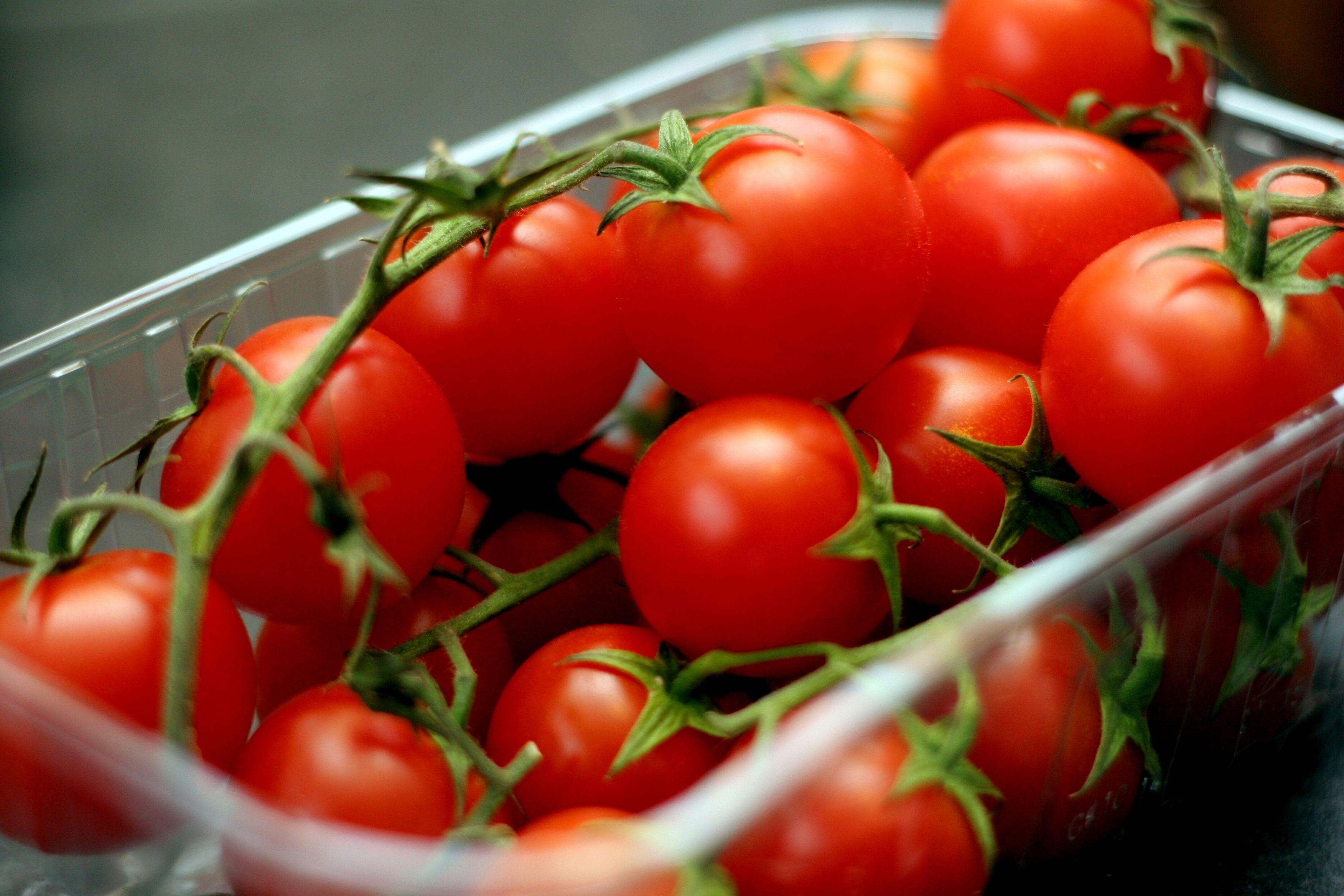Россия снимет ограничение на ввоз казахстанских томатов- Kapital.kz