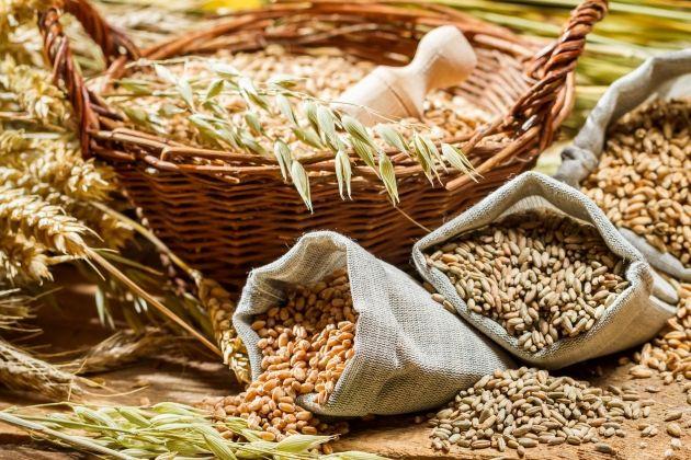 Недельный оборот по торговле зерном достиг 82 млн тенге- Kapital.kz