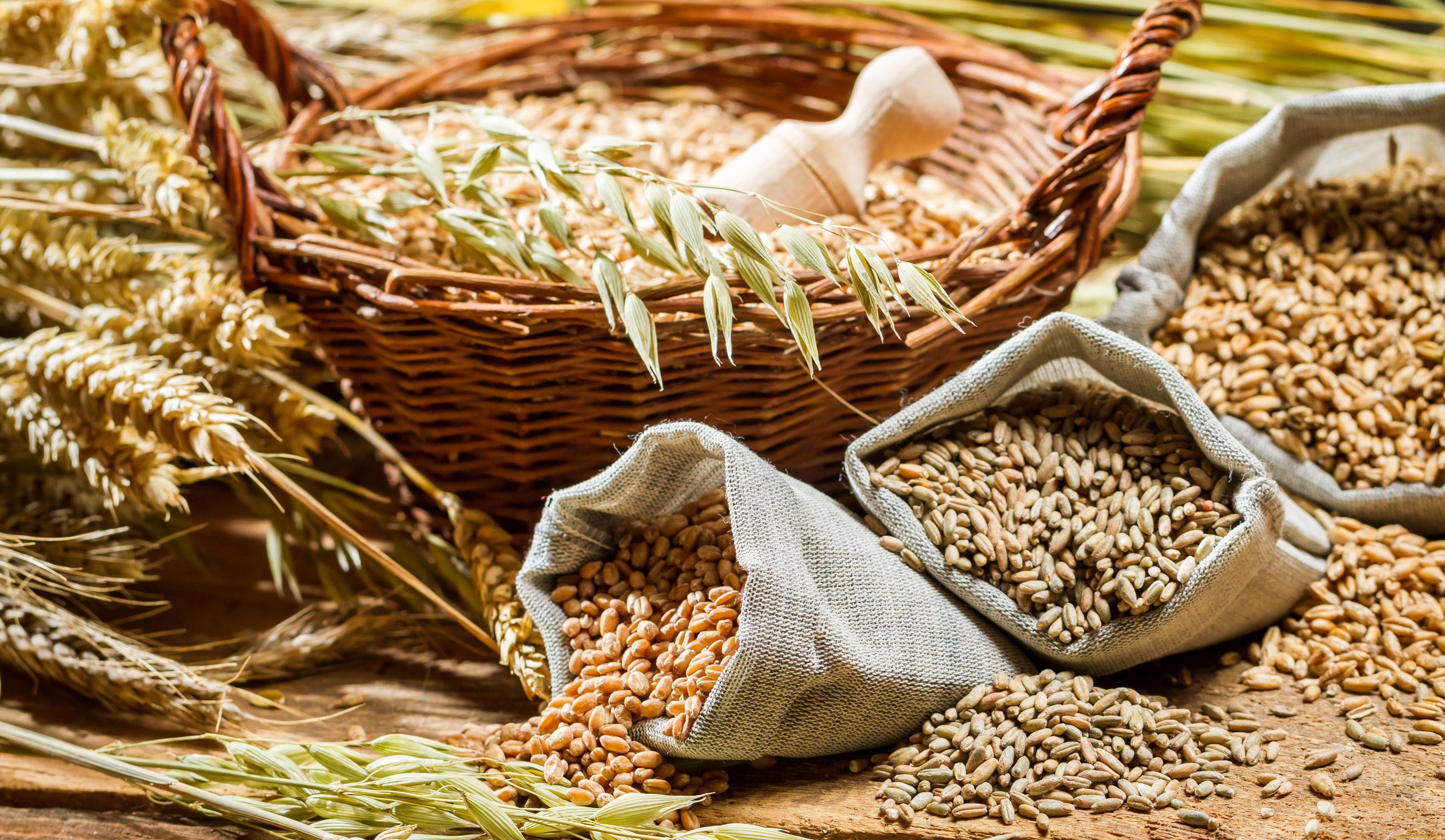 Элеватор по зерну и сои элеватор для зерна цена