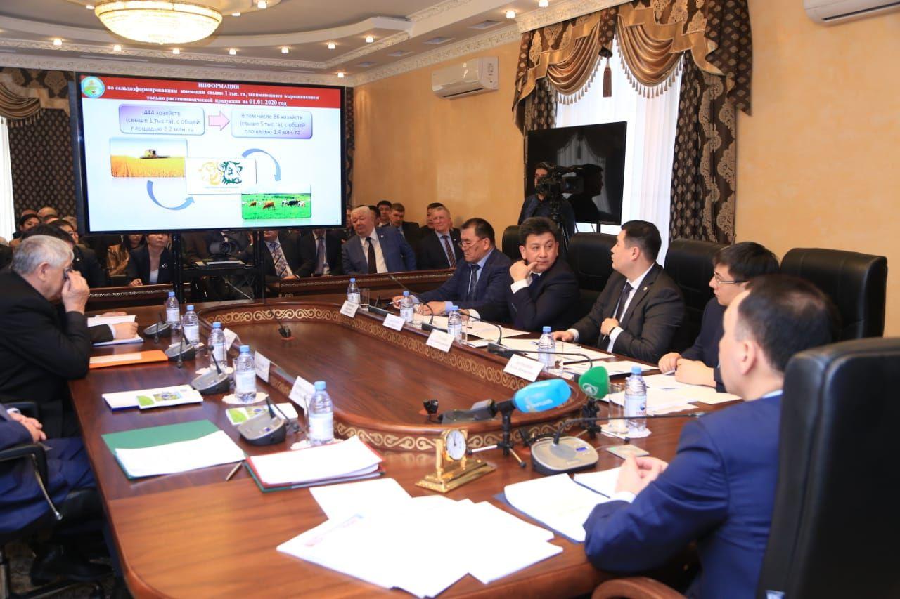 В 2020 году в Казахстане засеют свыше 22 млн гектар- Kapital.kz